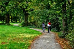 Fahrrad - Das Fahrrad ersetzt das Auto